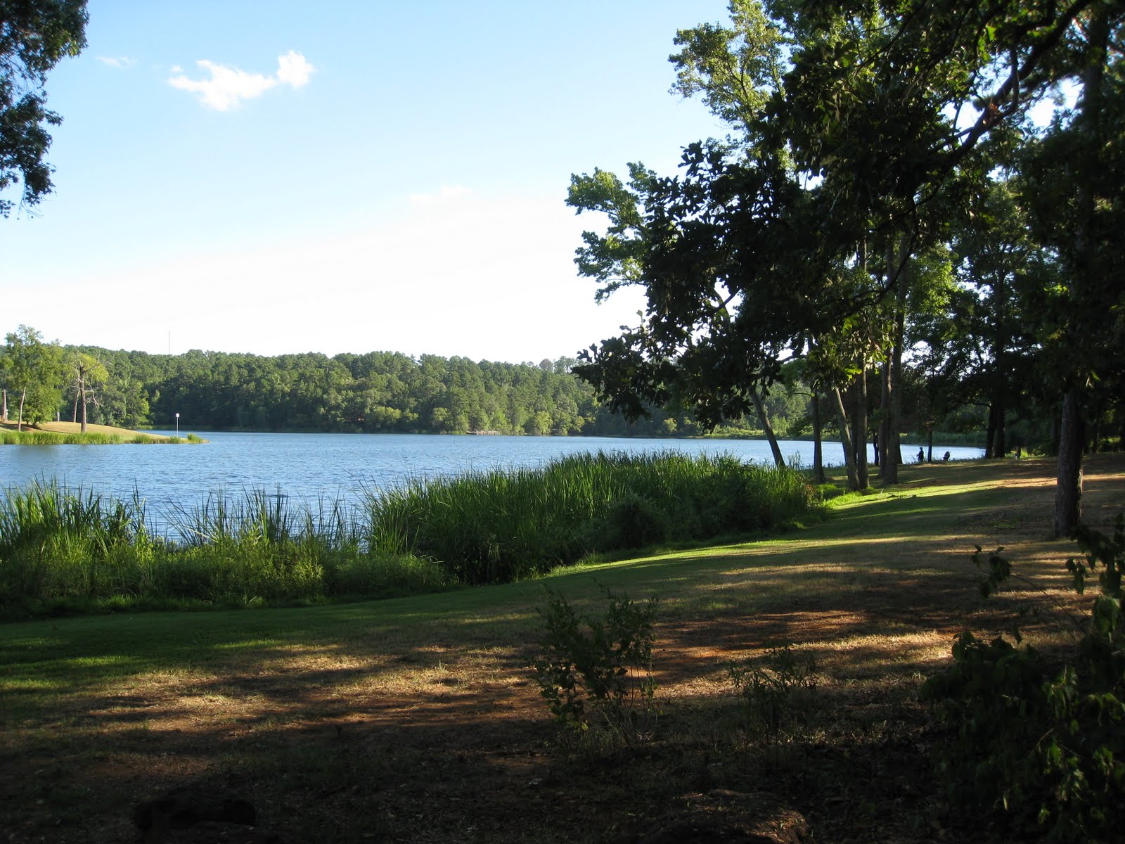 camping info, the stuff you need to know: Tyler State Park ...