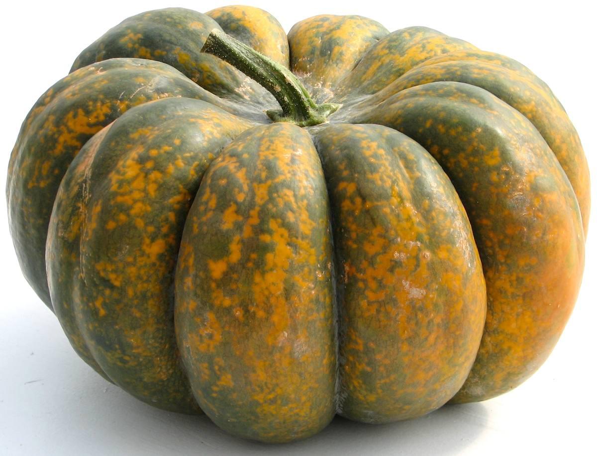 Hutchinson Farm: Heirloom Pumpkins