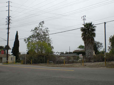 Exposition Blvd. and Military Ave. - Rancho Park