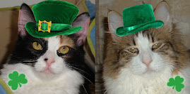 WHAT CUTE LEPRECHAUNS!
