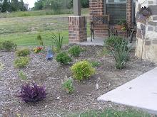 Flower & Harb Garden 1
