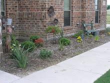 Flower & Harb Garden 2