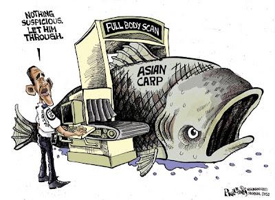 Apologise, Asian carp barrier talk