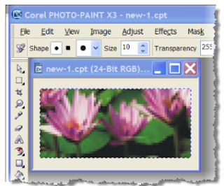 how to make background transparent corel photo paint x8