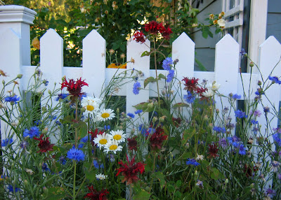 Notes From A Cottage Garden Red White Blue