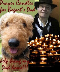 My NOMSS Friend Bogart 's Dad went to Heaven.