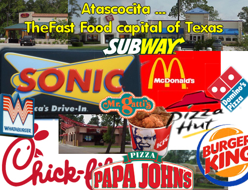 manuel the argumentative essay the argumentative essay the fast food