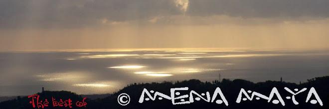 © Mena Maya