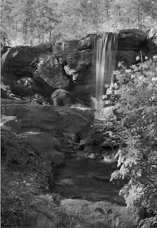Photograph of Garvan Gardens Waterfallin Black and White