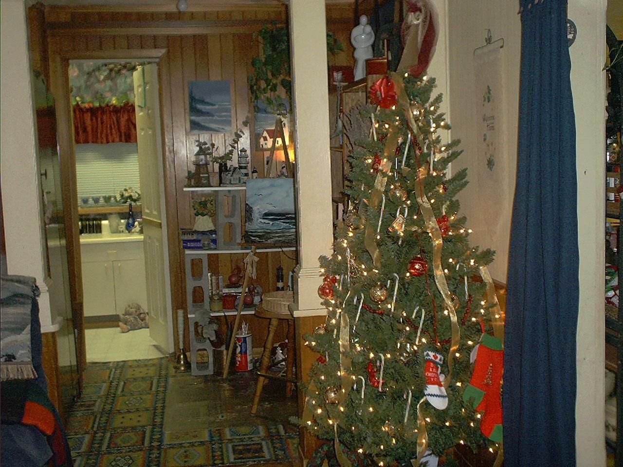 [Christmas+2006+Nita+house+Ruger+house+033.jpg]
