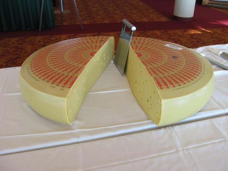 Giant wheel of cheese