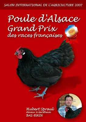 Volaille gastronomie for Prix d une poule