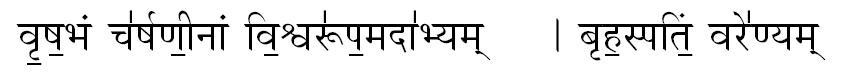 Vedic Astrologer Sunit P Mehta