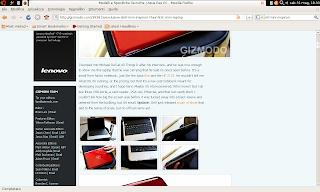 Possibile aspetto di Firefox aperto in Ubuntu Netbook-Remix