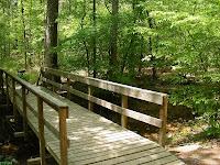 Bridge over perennial creek