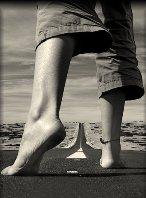 El camino de la vida