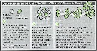 Resultado de imagem para cancer celulas cancerigenas