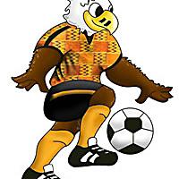 PHOTO DE LA SEMAINE: Mascotte de la CAN 2008