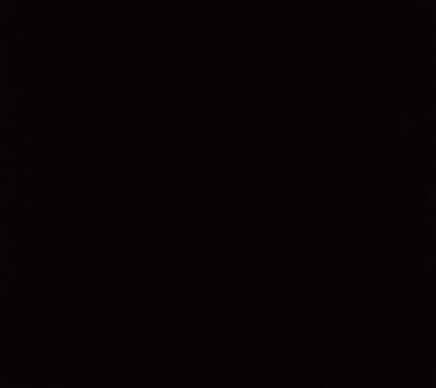 [negro.jpg]