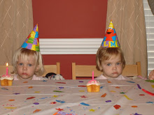 The twins second birthday