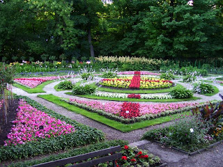 One of the beds from the Warsaw University Botanical Gardens