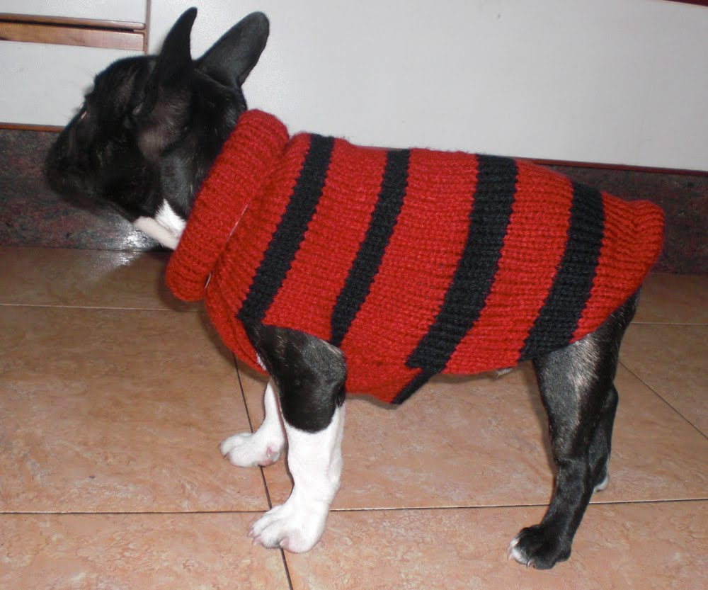 MI RINCON: LABORES( Abrigo para perro)