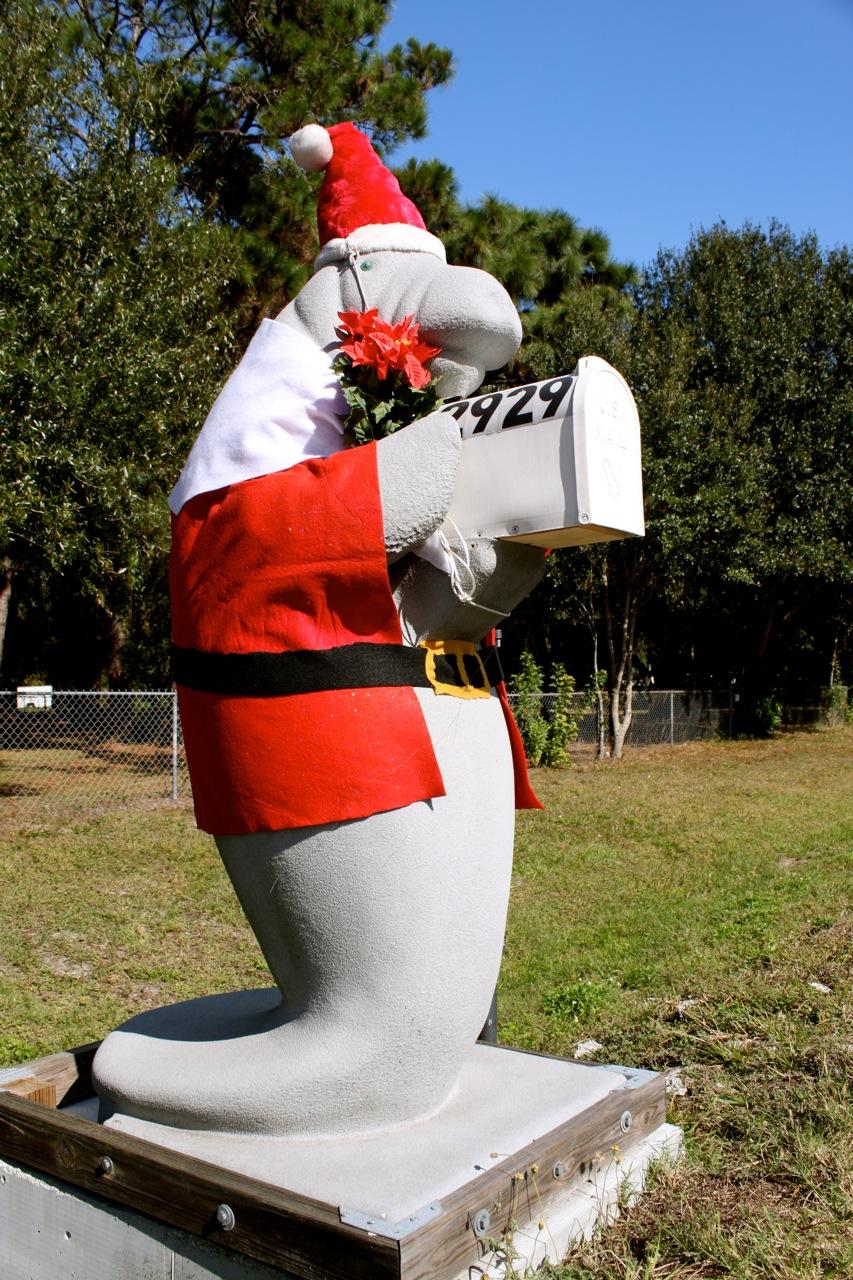 Sarasota Daily Photo Santa Manatee