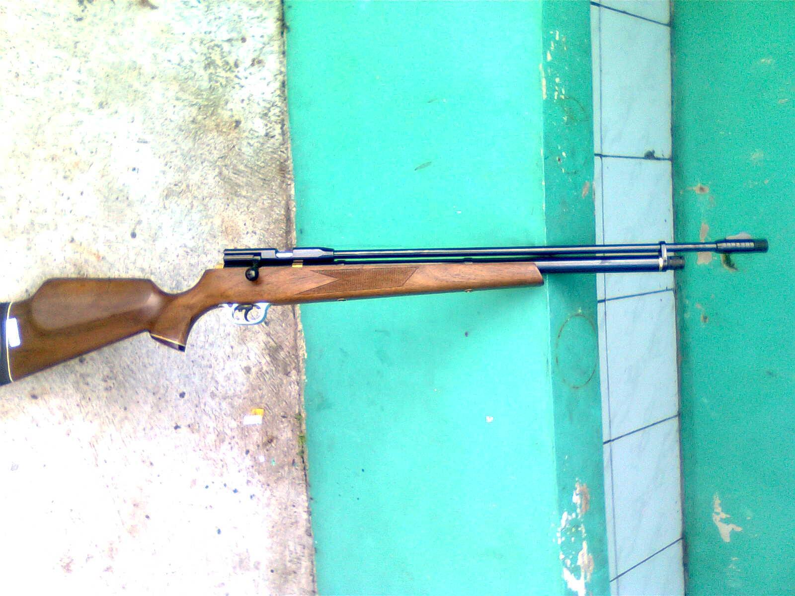 GUNS AND HOBBIES: SENAPAN PCP MAUSER MM