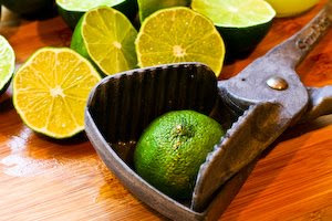 Freezing Fresh Lemon Juice and Lime Juice found on KalynsKitchen.com