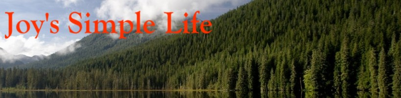 Joy's Simple Life