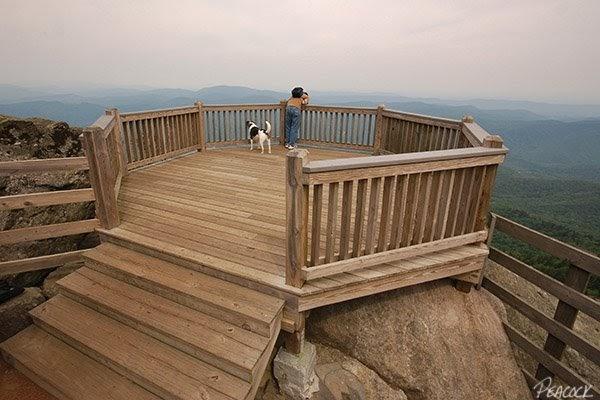 Appalachian Treks Roan High Bluff Overlook