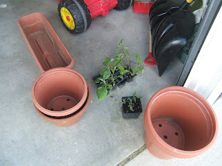 Container Gardening for Free