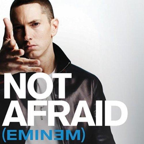 Music Blog: Not Afraid (Eminem)