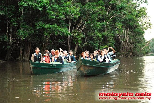 Tours Kinabatangan River