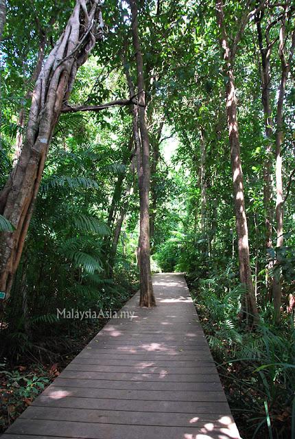 Nature Trail Krabi