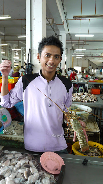Sandakan Lobster