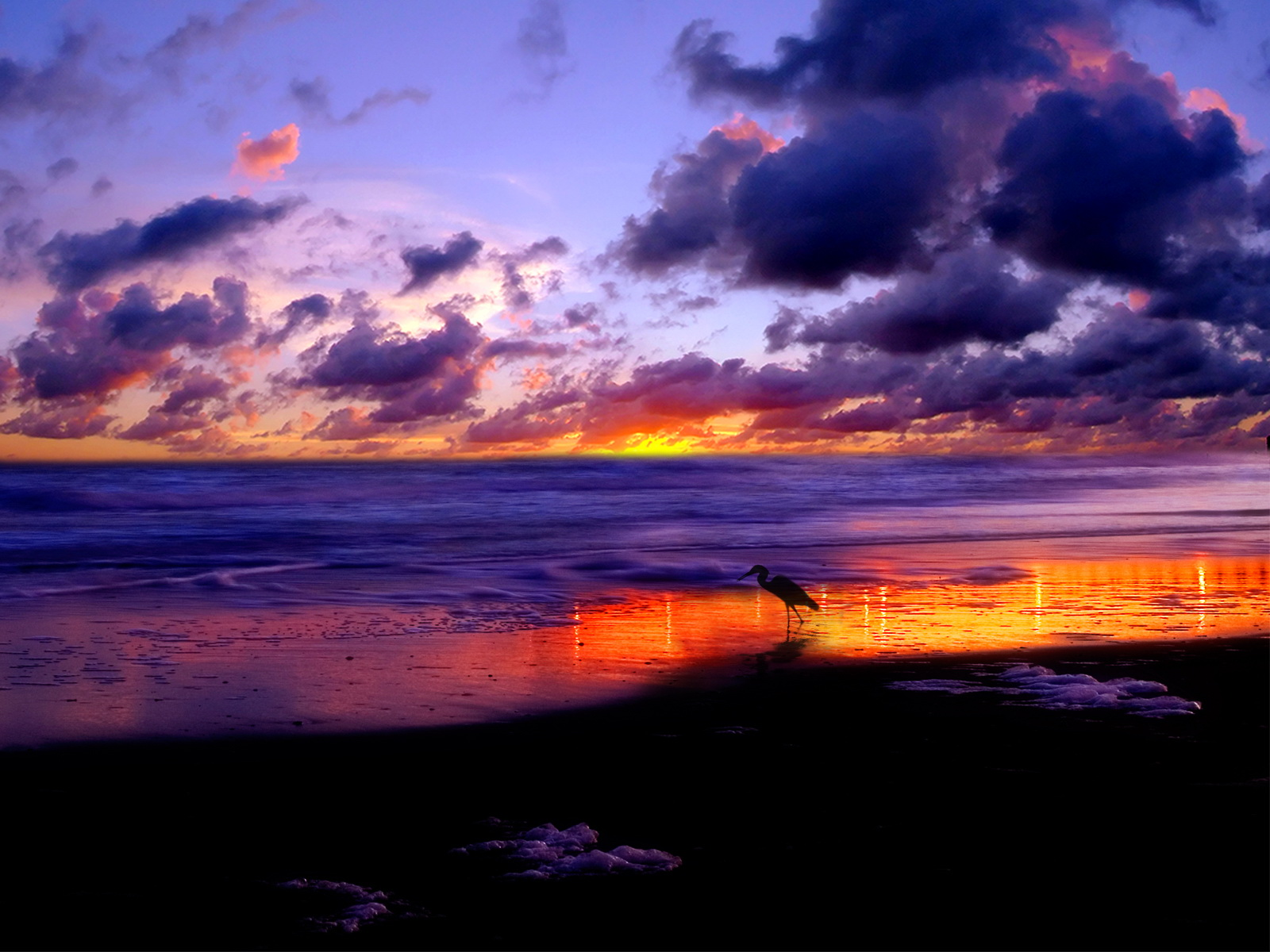 Pictures For World 写真自然に非常に大きな 大きな自然の背景
