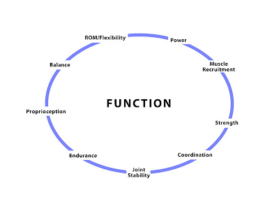 Post Rehab Tip 7 - The Components of Function