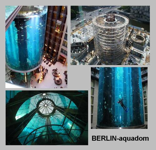 radisson blu hotel berlin aquadom. Black Bedroom Furniture Sets. Home Design Ideas
