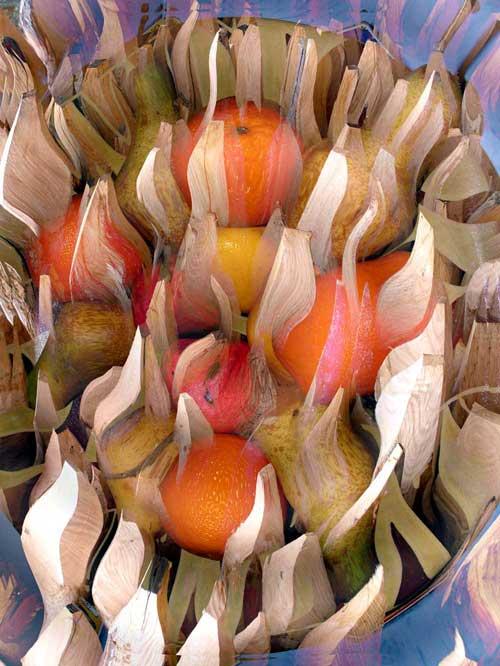 [fruit.jpg]