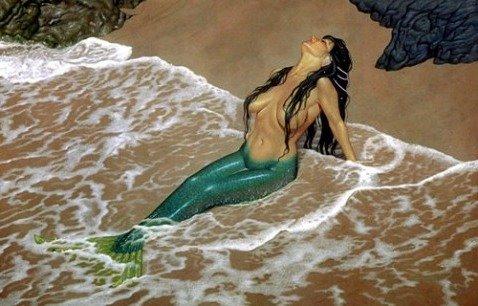 Con Sirenas Y Delfines