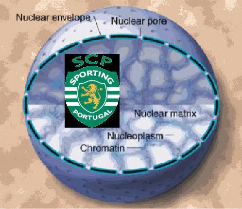 [nucleus.jpg]