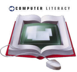 Theories of computer literacy