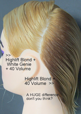 Battle Of The Highlift Blond Versus Bleach Photo Demo See For