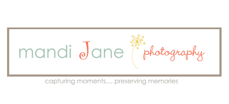 mandi Jane photography