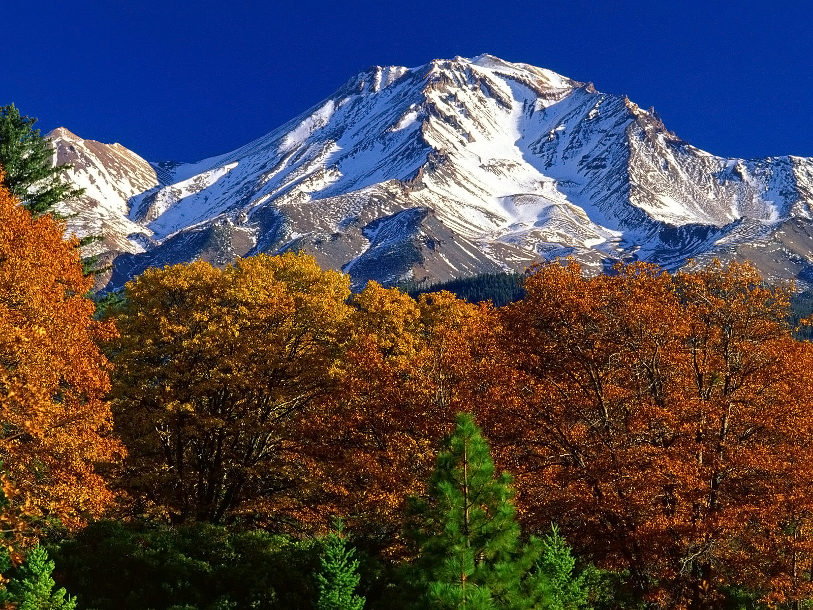 Mount Shasta, one of the volcanoes in the Land of Fire, has a snow cap on its tip year around because of its high altitude.