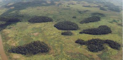 Reserva Biológica do Poço das Antas - Rio de Janeiro