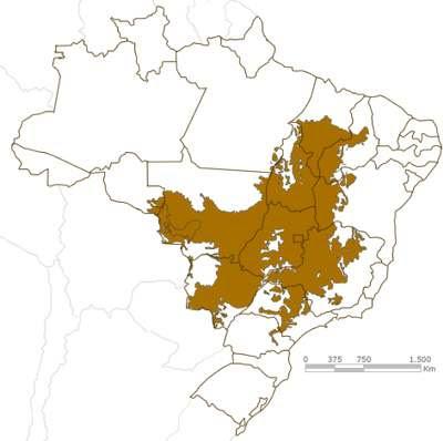 Cerrado - Mapa