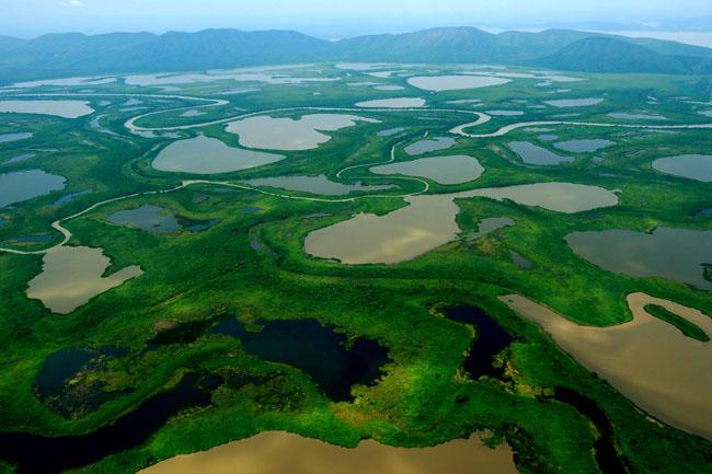 Parque Nacional do Pantanal
