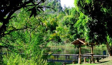 Floresta Nacional de Rio Preto